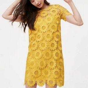 Loft Sunflower Lace Dress